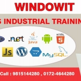 Six Months Industrial Training in Chandigarh - Windowit